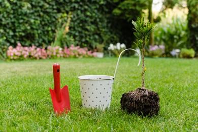 Følg disse tre råd og skab dig selv en hyggelig have