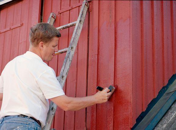 Højsæson for malearbejde: Undgå fejl med hjemmebesøg fra Husdoktoren